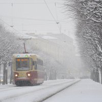 Вот и пришла в Санкт-Петербург зима :: Наталия П