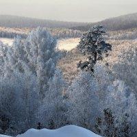 Январская красота :: Татьяна Соловьева