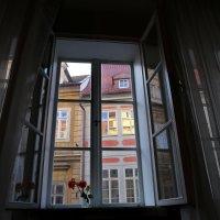 Одно январское утро в Праге :: Татьяна [Sumtime]