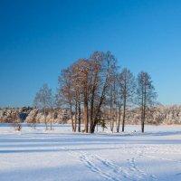 Зимний пейзаж :: Александр Знаменский