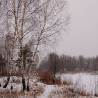 зимний берег озера :: Александр Прокудин