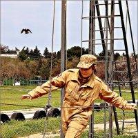 Быстрее птицы :: Кай-8 (Ярослав) Забелин