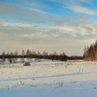 Зимний деревенский пейзаж :: Милешкин Владимир Алексеевич