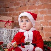 мини Санта Клаус :: Елизавета Забродина