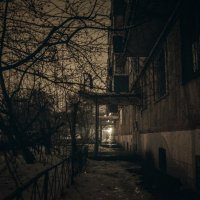 Зима :: Павел и Валерия Красношлык