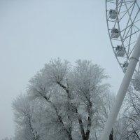 Зима в городе :: Надежда