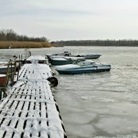 Зимовка. :: владимир