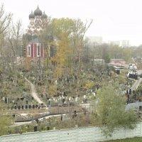 Вид из окна :: Андрей Мартюшев