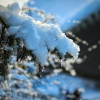 От солнца плачет снег, но это не печаль... :: Ирина Сивовол