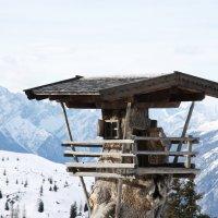 Сдается домик в горах, не дорого :: Мария Самохина