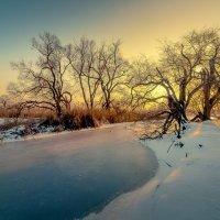 Зимний вечер!..... :: Александр Сыроватка