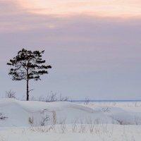 На высоком берегу на крутом . :: Мила Бовкун