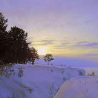 Мороз и солнце , день чудесный. :: Мила Бовкун