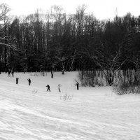 После снегопада :: Надежда Бахолдина