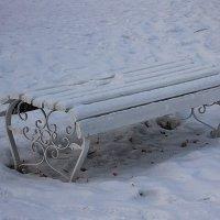 Снежные посиделки.... :: Tatiana Markova