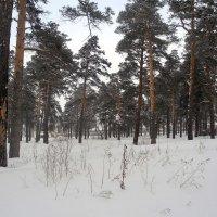 Район льнокомбината :: Олег Афанасьевич Сергеев
