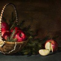 Красные яблоки :: Светлана Горбачёва