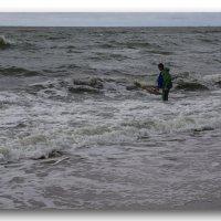 Балтийский берег.. :: Murat Bukaev