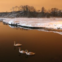 зимнее озеро.. :: Aleksandr Kaziniets