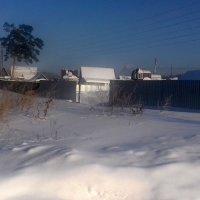Заметает  зима , заметает ! :: Мила Бовкун
