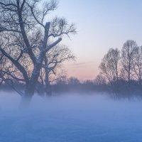 Зимний туман :: ALEXANDR L