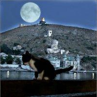 Балаклава. Лунный Кот и генуэзская крепость :: Кай-8 (Ярослав) Забелин