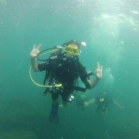 Отдых на море, Крым. Дайвинг. Подводная съёмка-14. :: Руслан Грицунь