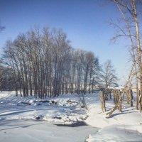 Зима на реке :: Вячеслав Баширов