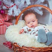 Подарок к Новому году :: Екатерина Бурдыга