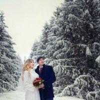 Любовь это-взгляд в одну сторону! :: Ольга Гребенникова