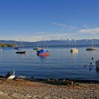 Причал на Баденском озере :: Kapris VS