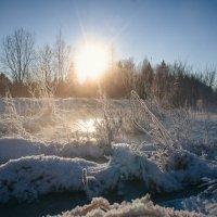 Лужа, которая замерзла :: Алёнка Шапран