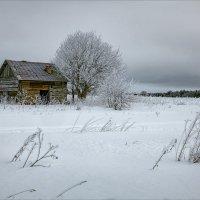 Старость и одиночество... :: Александр Никитинский