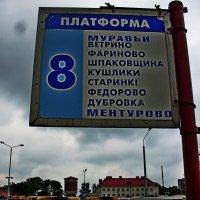 Куда поедем? :: Vladimir Semenchukov