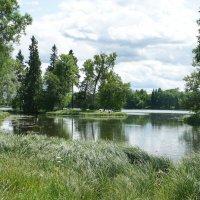 Белое озеро :: Елена Павлова (Смолова)