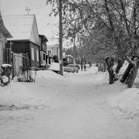 50 оттенков серого. :: A. SMIRNOV