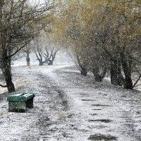 зимние настроение :: Moscow.Salnikov Сальников Сергей Георгиевич