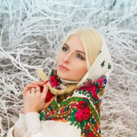 Зимняя русская красавица :: Julia Volkova