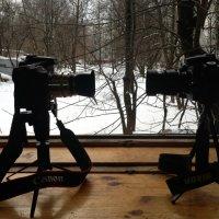 Canon-Nikon. :: Виталий Виницкий