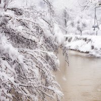 Зимняя красота :: Елена Васильева
