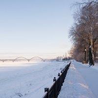 Морозный день :: Олег Пученков