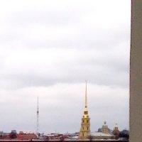 Вид на Петропавловскую крепость :: Svetlana Lyaxovich