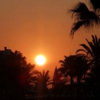Кипр, закат на солнечном острове ... :: Svetlana (Lucia) ***