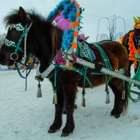 лошадки :: Юлия Денискина