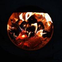 огонь древесный :: Роза Бара