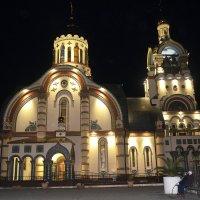 В Ночь На Рождество... :: Дмитрий Петренко