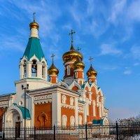 Кафедральный собор Илии Пророка в Ленинском округе. :: Виктор Иванович