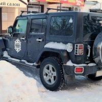 Проблемы новобрачных шерифа не волнуют:) :: Андрей Заломленков