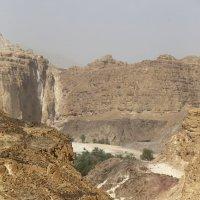 Оазис в пустыне :: Мария Самохина