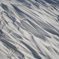 Резьба ветра по снегу :: Валерий Чепкасов